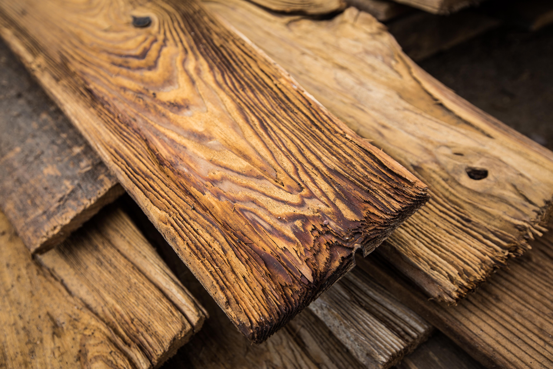 Mushroom Wood Furniture