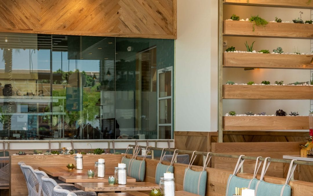 Inside Tocaya Modern Mexican – Scottsdale Fashion Square