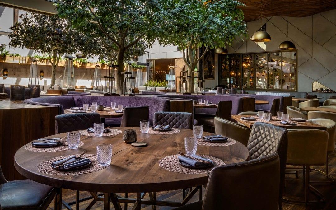 Walnut Table Tops – Toca Madera